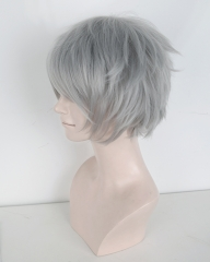 "S-1 / KA003 >> Neon Genesis Evangelion EVA Nagisa Kaworu 31cm / 12.2"" short light gray layered wig, easy to style"