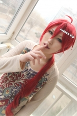Vocaloid Teto  male version 95cm long apple red  cosplay wig with long curly tail . (KA042)
